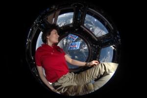 200 days in space. Credits: ESA/NASA